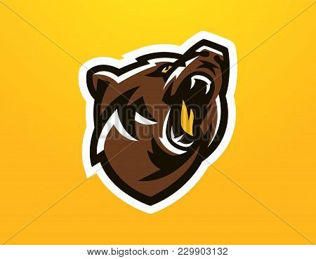 Colorful Logo, Identity, Mascot For The Sports Club, Community, Company, Angry And Growling, Bear Re