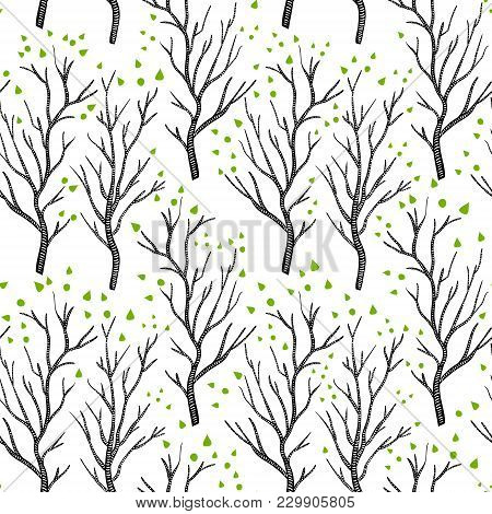 Birch Or Aspen Brown Trees In Spring With Small Green Leaves On White Seamless Pattern, Vector Backg