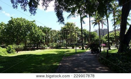 City Park Nearby Ainahau Triangle Of Waikiki, Honolulu (oahu, Hi, Usa)