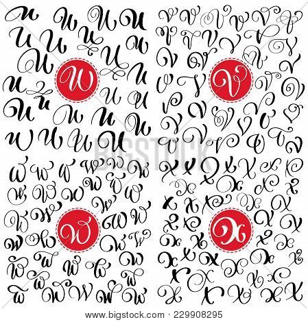Hand Drawn Vector Calligraphy Letter U, V, W, X. Script Font. Isolated Letters Written With Ink. Han