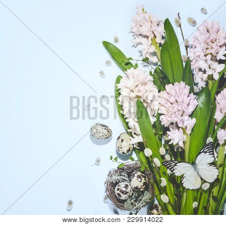 Quail nest with eggs and spring flower