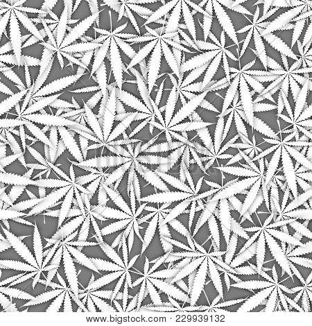 White Overlapping Marihuana Leaves Seamless Texture. Cannabis Leaf Pile Seamless Pattern. Medical Ca