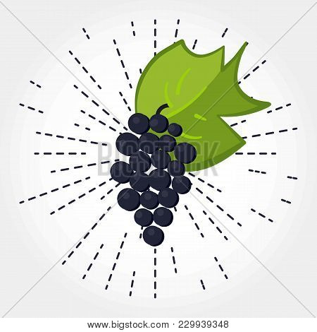 Bunch Of Grapes With Leaf. Vector. Hand Drawen Grape. Isolated Bunch Of Grapes On White Background W