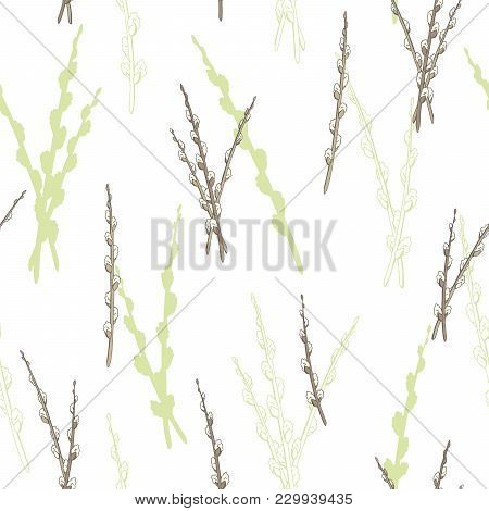 Pussy Willow Graphic Color Sketch Seamless Pattern Illustration Vector