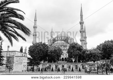 Istanbul, Turkey - May 22, 2016 - Blue Mosque In Sultanahmet In Istanbul, Turkey. Monochromatic Pict