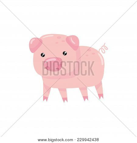 Illustration Of Pink Little Pig With Swirling Tail. Farm Livestock. Cartoon Character Of Domestic An