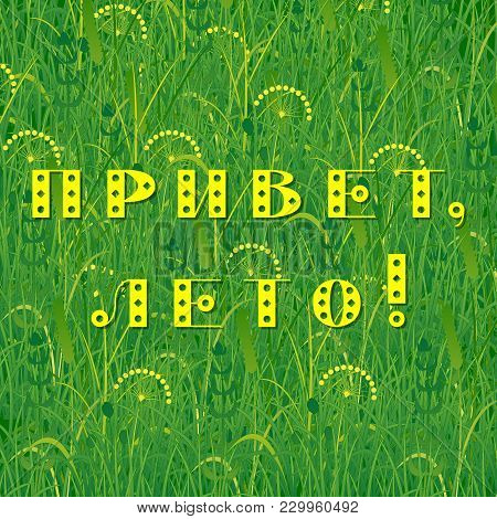 Background Of Grass. Text In Russian - Hello Summer. Plants Meadows And Fields. Concept Summer, Natu