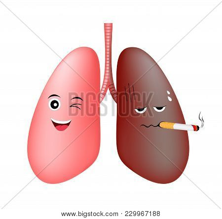 Healthy Lung Smile And Damage Smoking Lung Troubled. Cute Cartoon Character. Health Care Concept  Ve