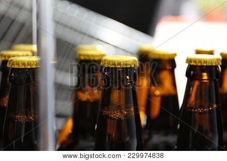 Bottles of beer in brewery, closeup