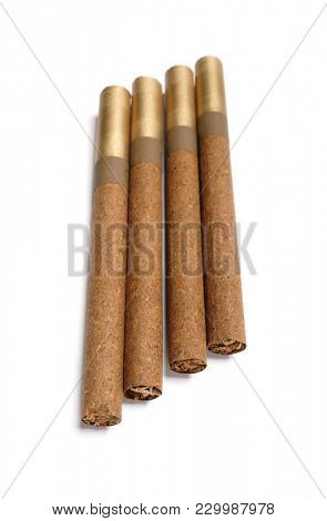 Cigars. Brown cigar on white background