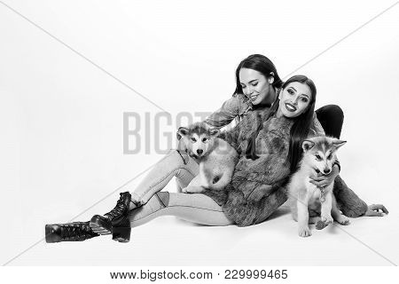 Pretty Sexy Brunette Women With Long Straight Hair Fashion Makeup In Denim Look With Cute Little Dog