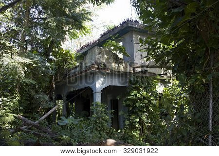 Bayamon, Puerto Rico/usa - February 9, 2019: Abandoned Property In Ruin And With Plant And Tree Grow
