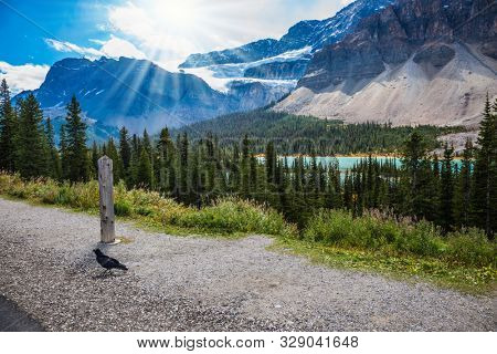 Sunny bright day in the Canadian Rockies. The famous picturesque glacier