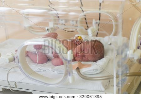 Premature Newborn Baby In The Hospital Incubator. Neonatal Intensive Care Unit