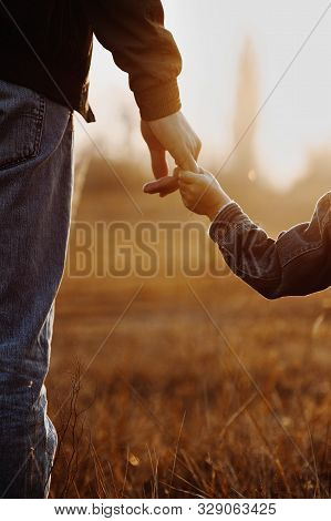 Colse Up View Of Father And Son Holding Hands In Backlight