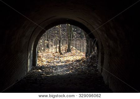 Old Tunnel With Brick Walls Overlooking The Autumn Forest. Lysa Hora, Kiev, Ukraine. View Inside The