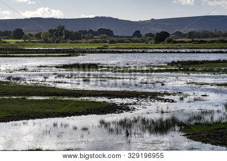 Flooded Countryside Landscape Natural Habitat For Wildlife