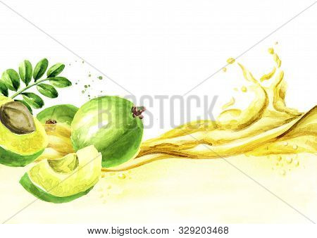 Amla Essential Oil Wave. Watercolor Hand Drawn Illustration, Isolated On White Background