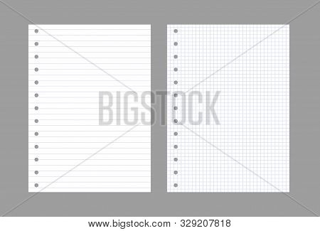 Exercise Book Paper Page Background. Notebook Sheet Lined Texture Pattern