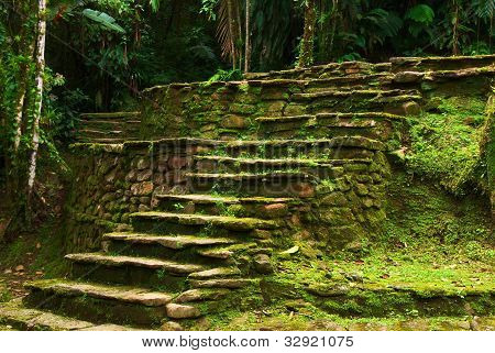 Old stone stairs leading to a terrace in Ciudad Perdida built by the people of Tayrona. This archeological site is close to Santa Marta in Northern Colombia. poster