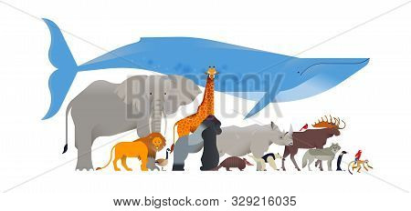 Animal Collection On Isolated White Background. Diverse Wild Animals Flat Cartoon For Educational Wi