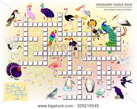 Crossword Puzzle Game For Kids With Cute Birds. Educational Page For Children For Study English Lang
