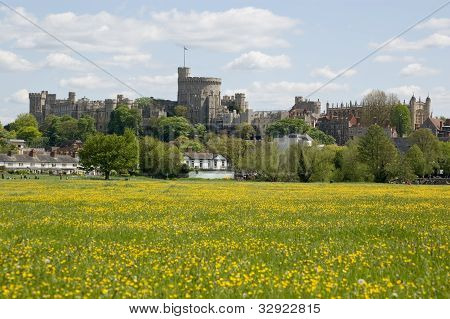 Windsor Castle and Buttercup Meadow