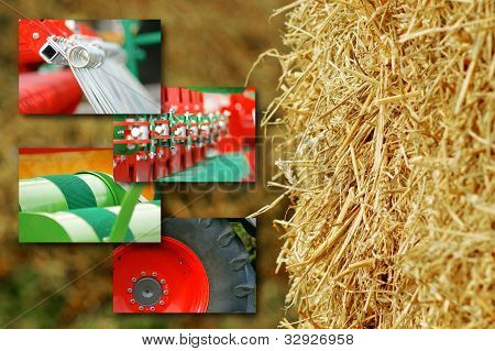 Agriculture Concept