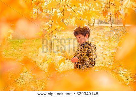 Beautiful Boy Among Golden Autumn Leaves. Melancholy Mood. Retrospective, Conceptual. Recollaction,