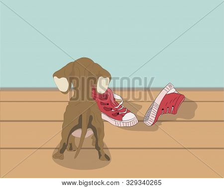 Vector Illustration Of A Dachshund That Stands In The Room, Vector, Dachshund Indoors