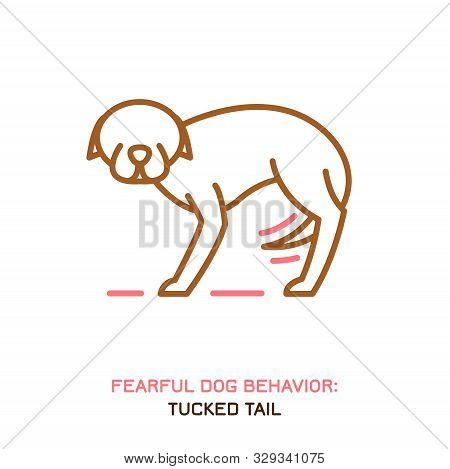 Dog Fearful Behavior Icon. Domestic Animal Or Pet Tail Language. A Dog With A Tucked Tail. Doggy Rea