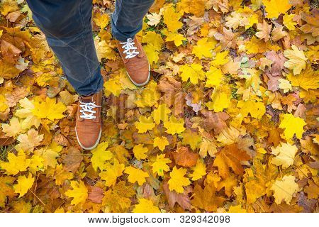 Autumn Background, Leaves, Feet And Shoes. Conceptual Image Of Feet In Sneakers On Yellow Autumn Lea