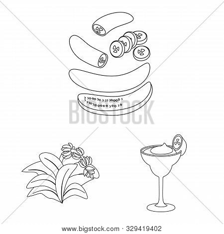 Vector Design Of Organic And Potassium Logo. Collection Of Organic And Diet Stock Vector Illustratio