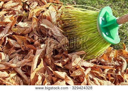Sweeping Dry Leaves With Broom.autumn, Fall Season.sweep The Leaves, Sweep People, Clean The Garden.