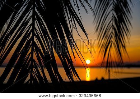 Amazing Summer Golden Sunset Over The Bay Of Roses, Catalunya, Spain. Palm Branches And Leaves On Ca