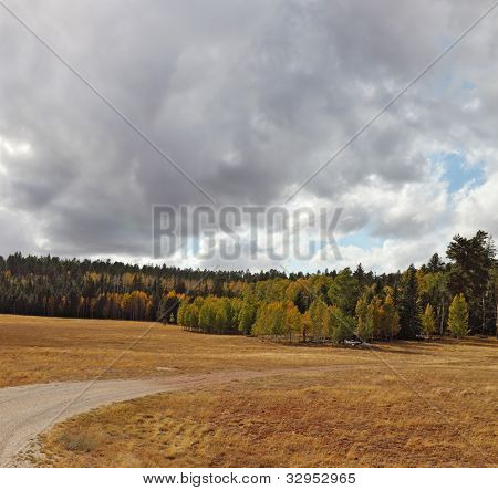 Autumn fields and forests near the North Rim of the Grand Canyon in the U.S