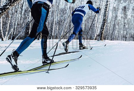 Two Athletes Skiers Move In Cross Country Skiing