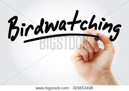 Hand Writing Birdwatching With Marker, Concept Background