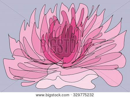 The Mystical Purity Of The Lotus, The Enlightenment Symbol.