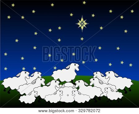 Flock Of Sheep Stands On The Field And Looking Up At The Big Star, Night Sky.