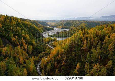 Trees In Autumn Over River Chasm. Yellow And Green Trees In Fall In Alaska.  Autumn Colors On Hillsi