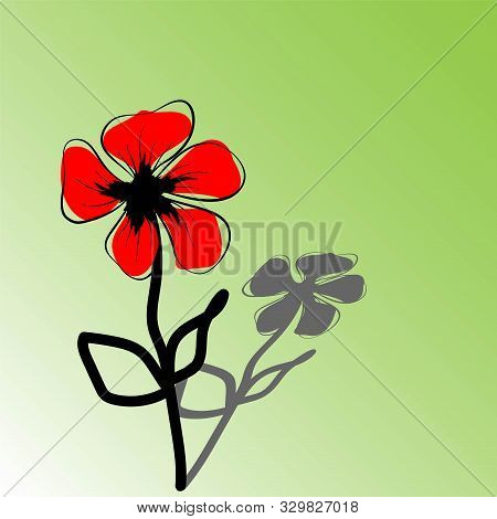Vector Poppy. Illustration Isolated. Romantic Botanical Wallpaper. Poppies, Great Design For Any Pur