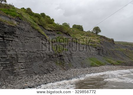 View Of The Blue Lias Cliff At Lyme Regis In Dorset Which Is Famous For Fossil Hunting