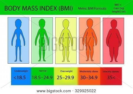 Body Mass Index Vector From Underweight To Extremely Obese. Woman Silhouettes With Different Obesity