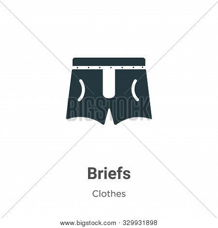Briefs icon isolated on white background from clothes collection. Briefs icon trendy and modern Brie