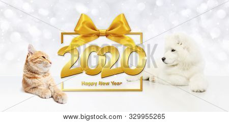 Gift Card, Dog And Cat 2020 Happy New Year Text On Package Frame With Golden Ribbon Bow On Christmas