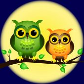 Pair of fun cartoon owls perched on branch on a night with full moon behind them. poster