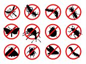 Pests vector silhouettes isolated. Insect reppelent emblem poster