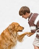 Little Boy Shaking Hands With the Dog poster