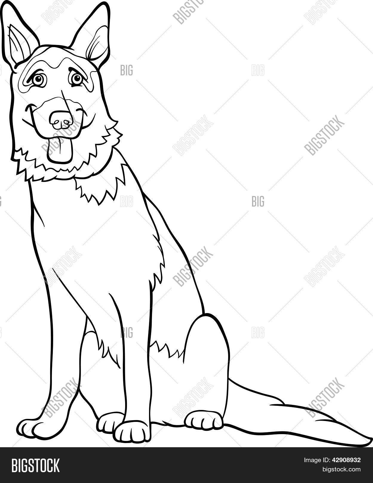 Vector y foto Perro De Pastor Alemán De Dibujos   Bigstock